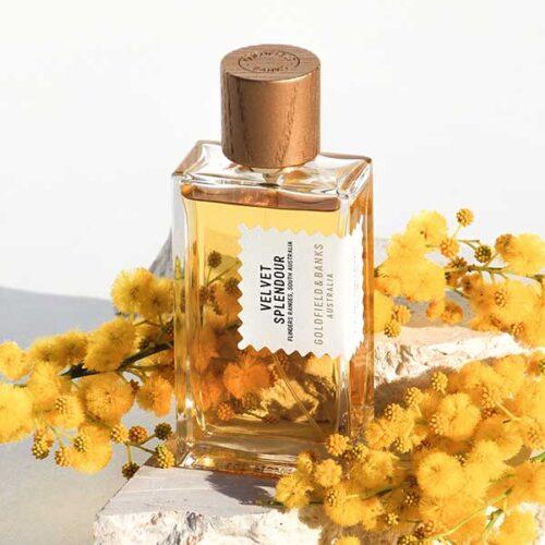 Goldfield & Banks parfume